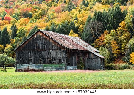 An old barn in a Vermont field during New Englands Fall Foliage season