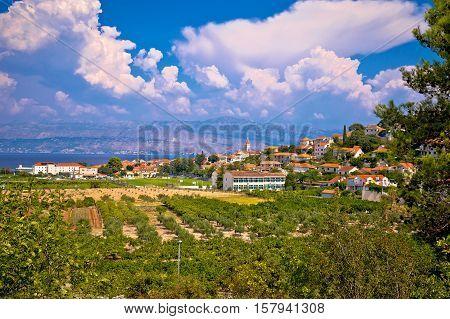 Postira village in green nature view island of Brac Dalmatia Croatia