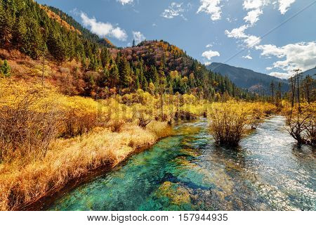 Scenic River With Crystal Water Among Fall Forest And Mountains