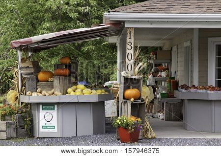 Farnham, QC, September 19, 2016 -- Pumpkins vegetables and fruits on a small stand with a vendor sorting produce, shot near rural Farnham, Quebec, on a very bright but slightly overcast day in late September.