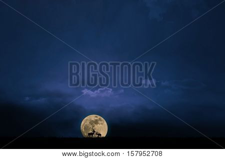 Silhouette of deer standing on a field at night with fullmoon and blue night sky