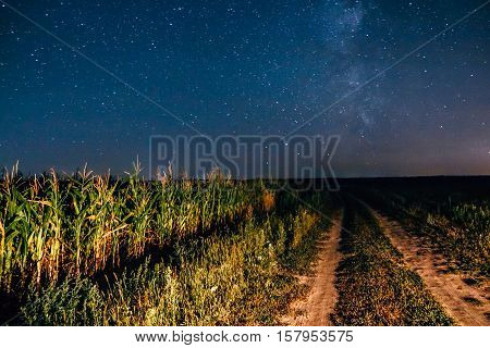 The night the starry sky over a field with country road