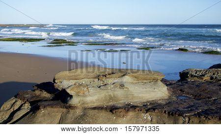 Rocky outcrop on Newcastle Beach, NSW, Australia.