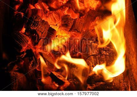 tongues of flame on the burning coals