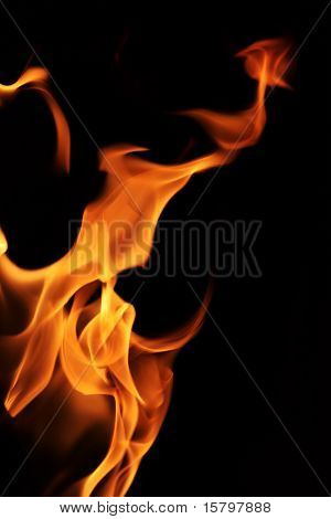 Fire flames texture over black background