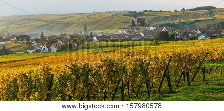 Alsatian Vineyards, Alsace, France, Europe, Autumn, Mountain,