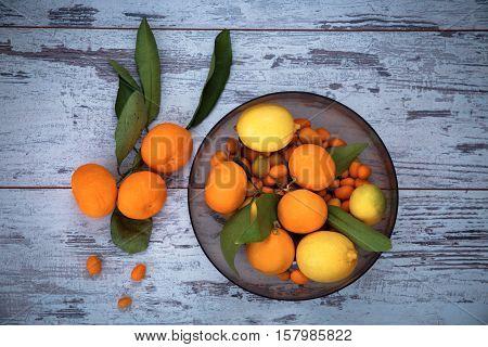 Turkish Citrus Fruits