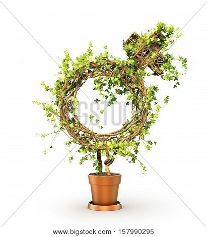 Gender concept. The green plant in form of venus sign. 3d illustration