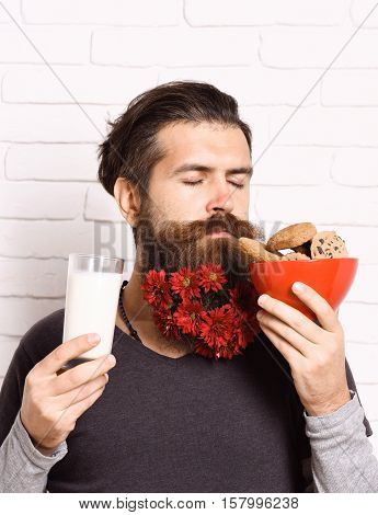 handsome bearded man with stylish mustache and long beard with red autumn flowers on serious face holding glass of milk and sniffing chocolate chip cookies on white brick wall background