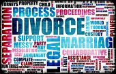 Divorce Marriage Process and the Ugly Truth poster