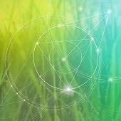 Sacred geometry. Mathematics, nature, and spirituality in nature. The formula of nature. There is no beginning and no end of the Universe, and no beginning and no end of the Life and the Bliss. poster
