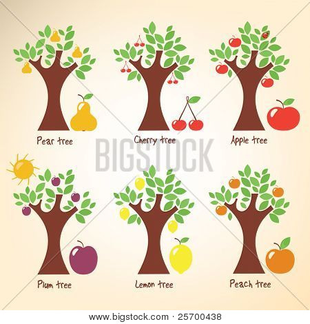 Different trees and fruits.
