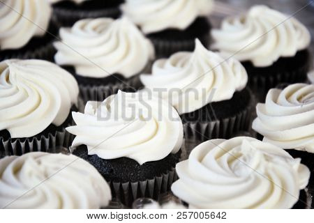 Tray of chocolate cupcakes topped with white vanilla frosting