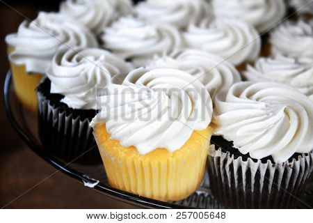Tray of chocolate and vanilla cupcakes topped with white vanilla frosting
