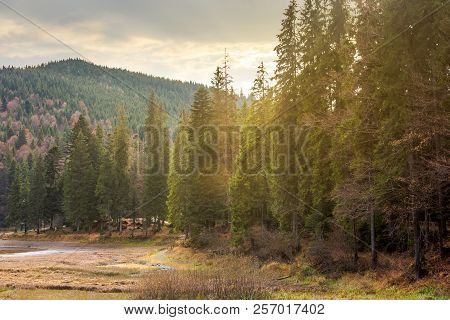 Beautiful Scenery Of Lake Among The Forest. Wonderful Autumn Afternoon In Mountains