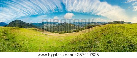 Panorama Of Rural Fields On Curvy Slopes. Bright Autumn Day. Lovely Countryside On Fine Weather And
