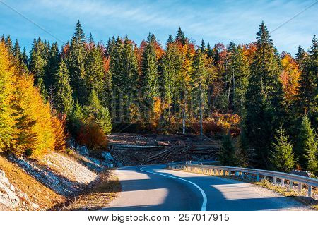 Winding Mountain Road In Autumn Forest. Lovely Nature Scenery With Colorful Foliage. Travel Europe B