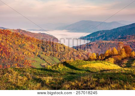 Beautiful Landscape At Foggy Autumn Sunrise. Red Foliage On Forested Hills. Cloud Inversion In Dista