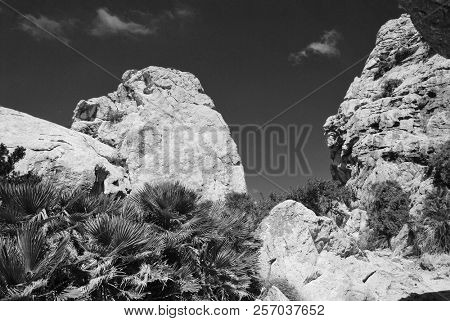 Large rocks line the walk through the Boquer valley in the Tramuntana mountains on the Spanish island of Majorca.