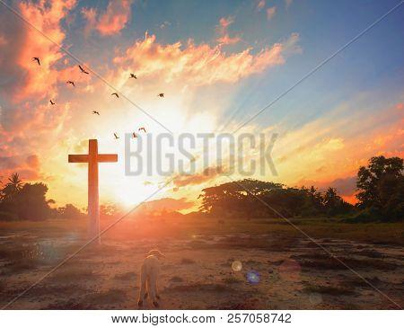Resurrection Of Jesus Christ Concept: God Lamb In Front Of The Cross Of Jesus Christ On Sunrise Back