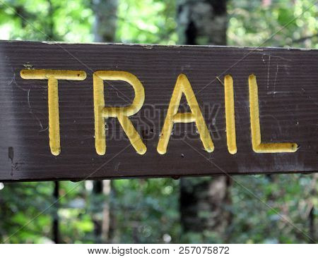 Walking Trail Wooden Sign In Tree Forest