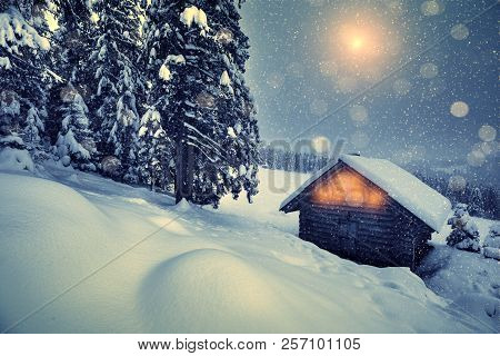 Christmas Snowfall In Mountains. Beautiful Winter Christmas Night On Hills. Winter Landscape With Wo