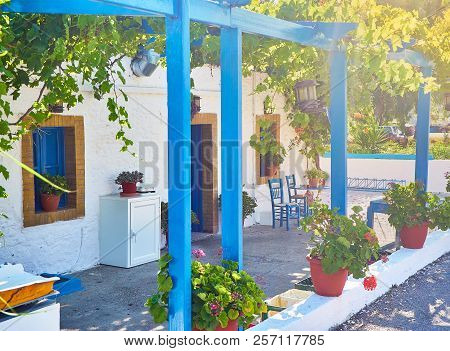 A Typical Porch Of A Greek House Covered With A Grapevines. Greek Island Of Kos, South Aegean Region