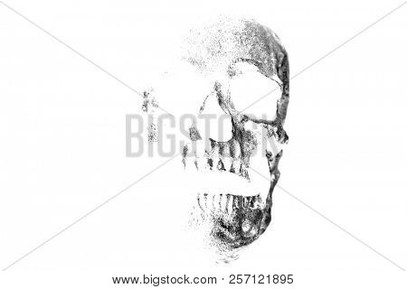 Halloween human skull. evil laughing human skull. spooky and scary. room for text.