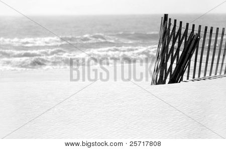 Curled sand dune fence on pristine beach with ocean in distance