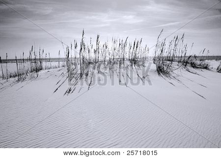 Beautiful white sand dune with windswept ripples under pretty sky