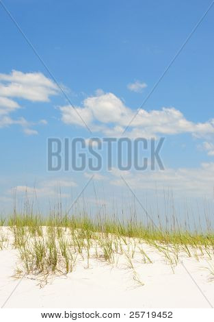 Beautiful white sand dune and grasses under puffy cloud sky