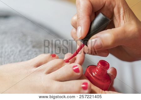 The master covers the customer's nails with varnish. Hands in gloves cares about a woman's foot nails. Pedicure, manicure beauty salon concept. Nail varnishing in red color poster