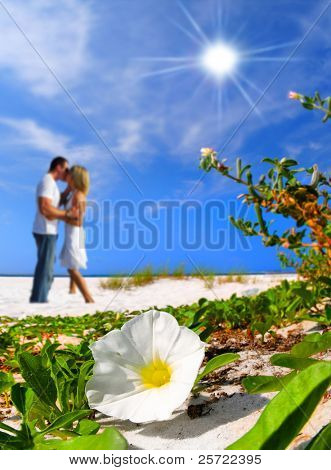 White morning glory blossom on beach by romantic couple