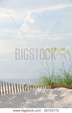 beautiful sand dune at pretty beach