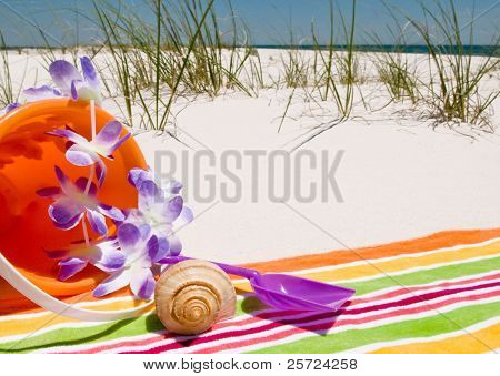 pretty beach towel and seashells at ocean