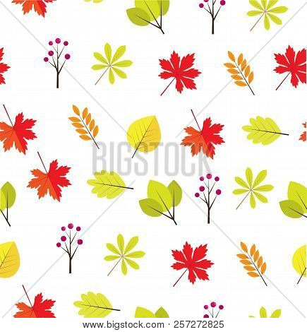 Vector Illustration Of Fall, Autumn Leaves. Fall, Autumn Background. Nature Background.