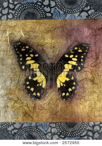 Mixed medium illustration of a yellow butterfly. poster