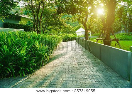 Cement Walkway In The Garden, Beautiful Path In A Park, The Walkway Is Made Of Concrete In The Garde
