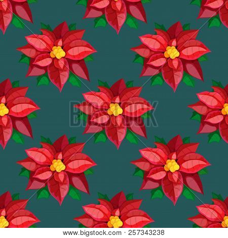 Christmas And New Year Seamless Red Poinsettia Pattern On A Dark Background. Christmas Star Pattern.