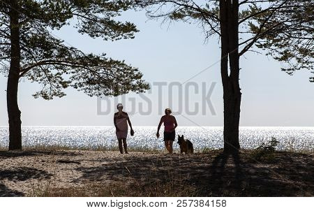 Baltic Sea, Sweden On July 27. View Of Two Women, A Dog And The Sea In Bright Sunshine On July 27, 2