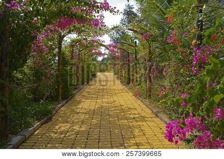 A flowered walkway in the Bong Lai or Suoi Tre Red Canyons near Mui Ne in south central Bình Thuan Province, Vietnam poster