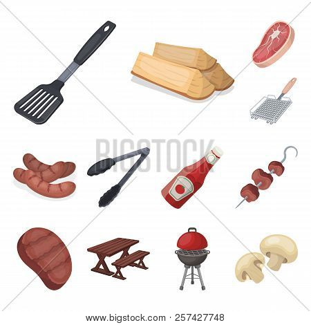 Barbecue And Equipment Cartoon Icons In Set Collection For Design. Picnic And Fried Food Vector Symb