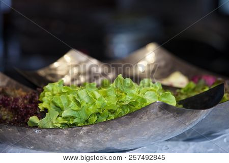 Salad Bowl Leafy Green Healthy Bowl Dinner Lunch Vegetarian Plate Meal Cooking Super Vegan Cabbage P