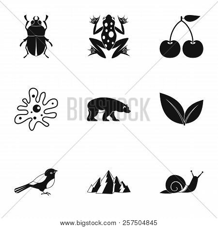 Flora Icons Set. Simple Illustration Of 9 Flora Icons For Web