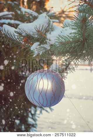 Christmas Ball Hanging On Tree Branch In Snow Winter Forest. Selective Focus On Ball.