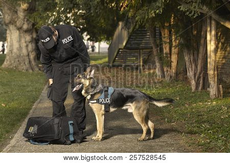 Police Officer With His Dog Checking Unknown Potentially Dangerous Bag In Park