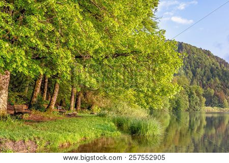 French Landscape - Jura. Trees And Park Benches On The Shore Of The Lake Bonlieu In The Jura Mountai
