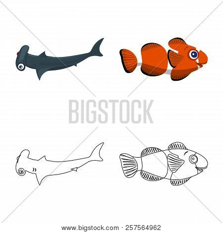 Isolated Object Of Sea And Animal Sign. Set Of Sea And Marine Vector Icon For Stock.
