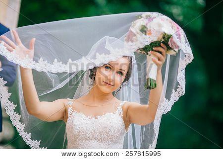 Closeup Shot Of Elegant, Brunette Bride Posing Under Veil Closeup. Bride Portrait Wedding Makeup Fas