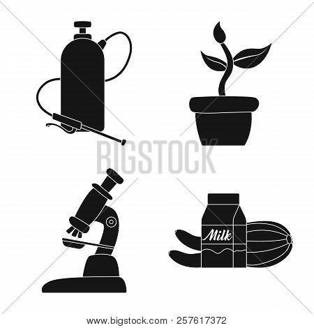 Isolated Object Of Genetic And Plant Symbol. Set Of Genetic And Biotechnology Stock Vector Illustrat